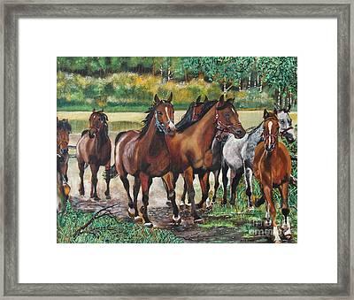 Galloping Horses Framed Print by Ryszard Sleczka