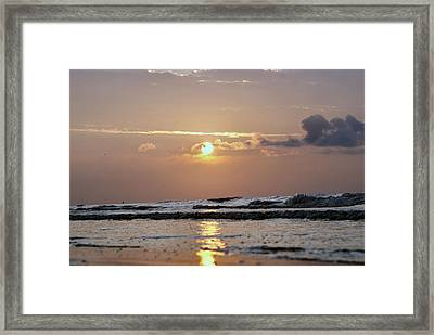 Galveston Island - Texas Framed Print by Michael Davis