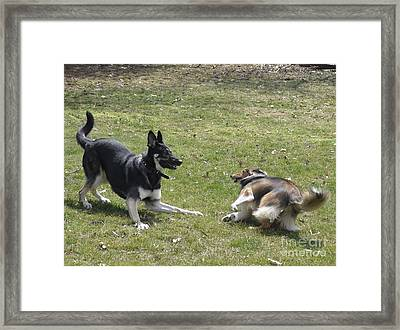 Framed Print featuring the photograph Game Over Baby by Luther Fine Art