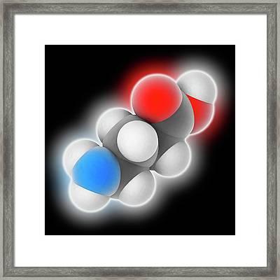 Gamma-aminobutyric Acid Molecule Framed Print by Laguna Design