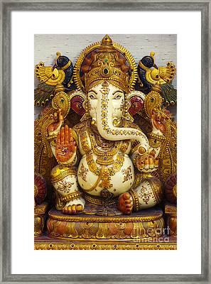 Ganesha  Framed Print by Tim Gainey