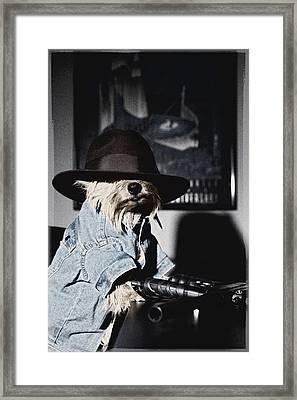 Gangster Dog Framed Print by Susan Stone