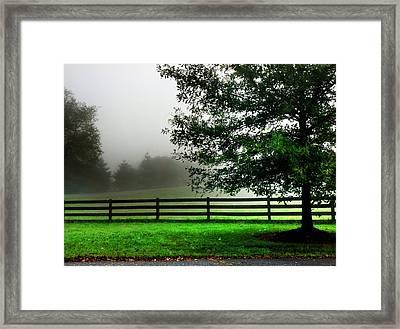 Gap Creek Morning Framed Print