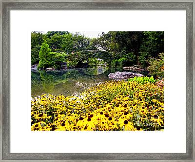 Gapstow Bridge In Spring Framed Print