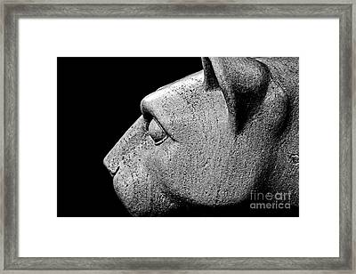 Garatti's Lion Framed Print by Tom Gari Gallery-Three-Photography