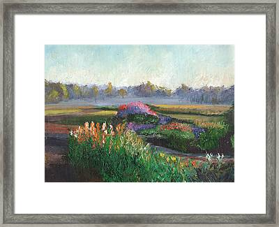 Garden At Sunrise Framed Print by William Killen