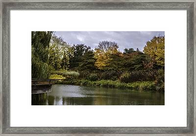 Garden Autumn Colors Framed Print