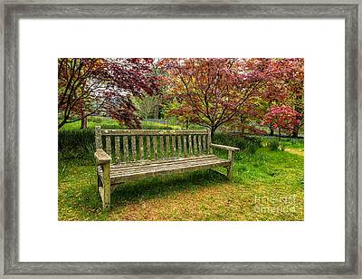 Garden Bench Framed Print by Adrian Evans