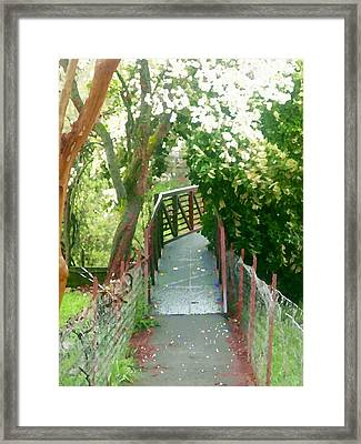 Framed Print featuring the photograph Garden Bridge by Tamyra Crossley
