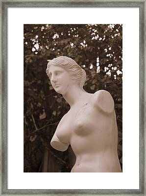 Framed Print featuring the photograph Garden Bust by George Mount