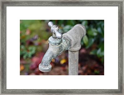 Garden Faucet Framed Print by Cathie Tyler