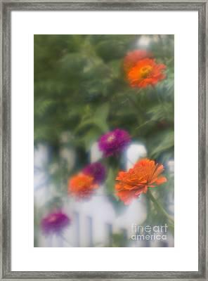 Garden Fence - D009100 Framed Print