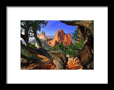 Beauty Of Nature Framed Prints