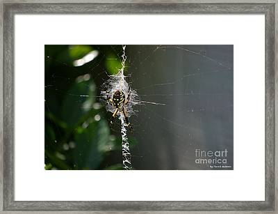 Framed Print featuring the photograph Garden Friend by Tannis  Baldwin