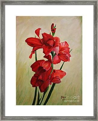 Garden Gladiolas Framed Print