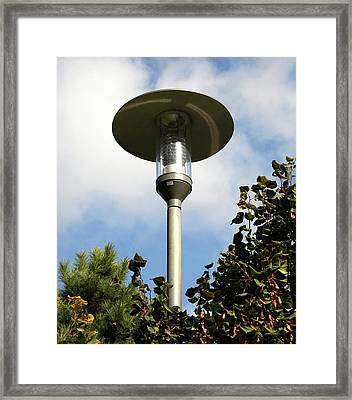 Garden Heater Framed Print by Public Health England