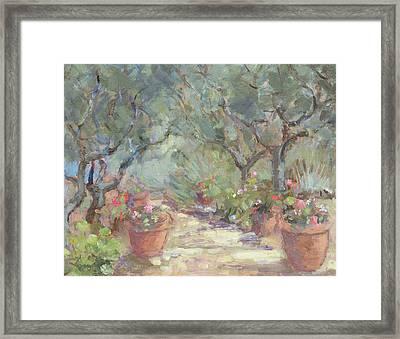 Garden In Porto Ercole, Italy Framed Print by Karen Armitage