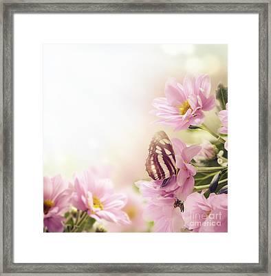 Garden Framed Print by Jelena Jovanovic