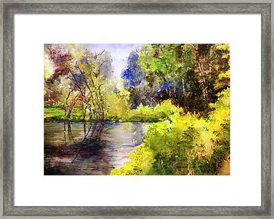 Garden Lake Framed Print