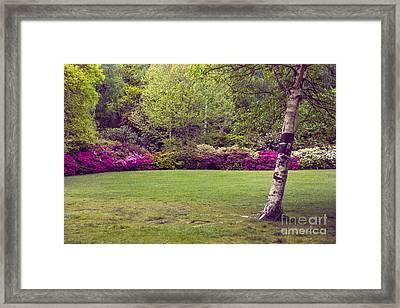Garden Landscape Framed Print by Svetlana Sewell