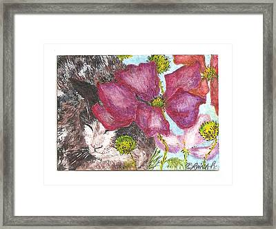 Garden Nap Framed Print