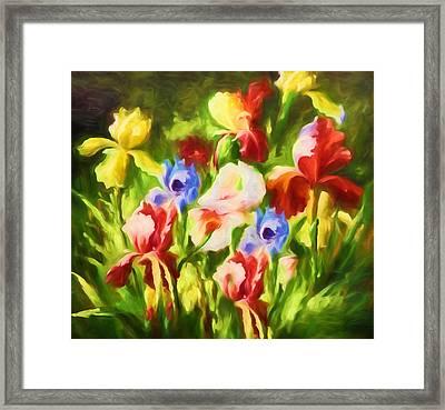 Garden Of Blooms Framed Print by Georgiana Romanovna