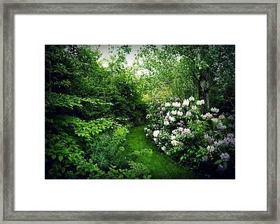Garden Of Enchantment Framed Print