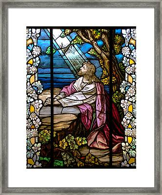 Garden Of Gethsemane Framed Print