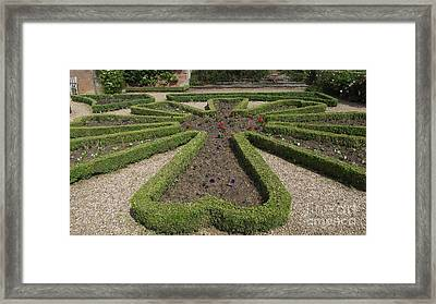 Garden Of Peace Framed Print by Tracey Williams