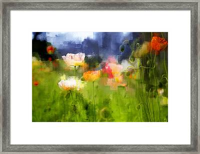 Framed Print featuring the photograph Garden Of Poppies by Linde Townsend