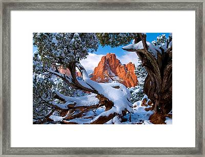 Garden Of The Gods Framed By Juniper Trees Framed Print