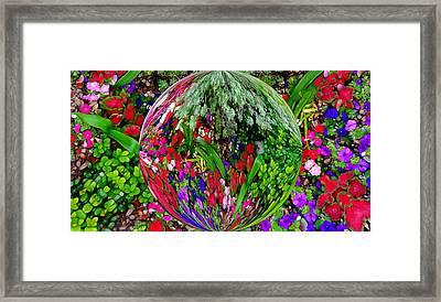 Garden Orb Framed Print by Dan Sproul