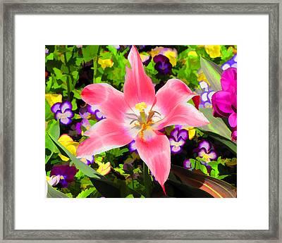 Garden Party Framed Print by John Freidenberg