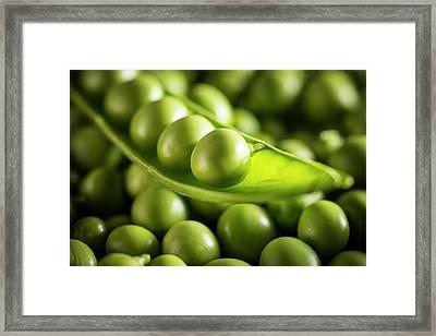 Garden Peas In The Pod Framed Print by Aberration Films Ltd