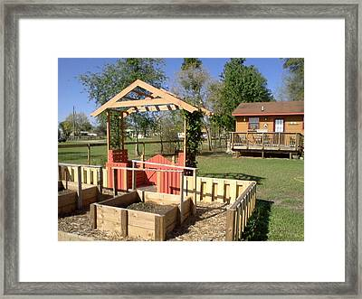 Garden Planter Boxes Framed Print