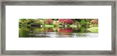 Garden Pond Framed Print by Oscar Gutierrez