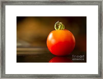 Garden Ripe Tomato Framed Print by Randy Wood