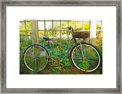 Garden Scene Framed Print by Denise Darby