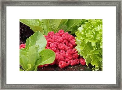 Garden Scene Framed Print