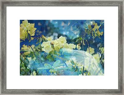 Garden Spirits Framed Print by John Fish