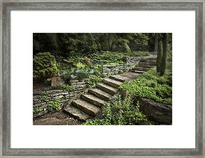 Garden Steps Framed Print by Tom Mc Nemar