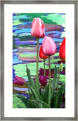 Garden Sunset Framed Print