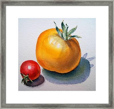 Garden Tomatoes Framed Print by Irina Sztukowski
