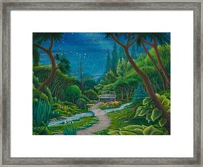 Garden Under Ursa Major Framed Print