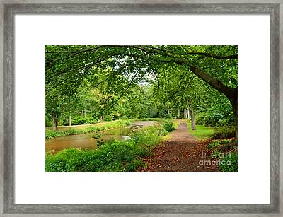 Garden Walk Framed Print