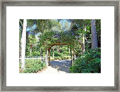 Garden Walkway Framed Print by Aimee L Maher Photography and Art Visit ALMGallerydotcom