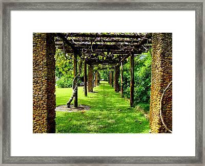 Garden Walkway Framed Print by Carey Chen