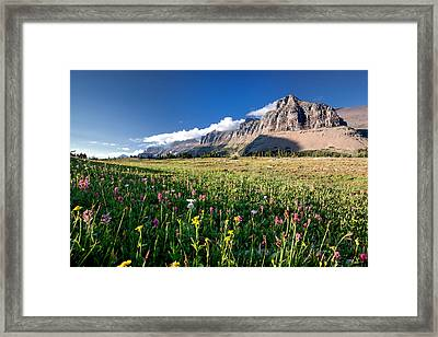 Garden Wall At Dusk Framed Print by Aaron Aldrich