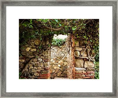 Garden Walls Framed Print by Lutz Baar