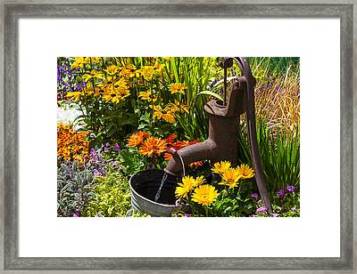 Garden Water Pump Framed Print